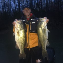 Cole Sands Two Spring Bass